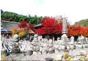 念仏寺(化野念仏寺)